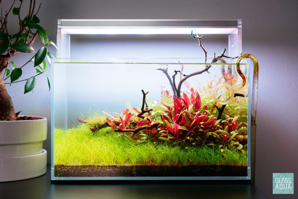 Ultum Nature Systems 5n Planted Nano Tank Gallery Glass Aqua