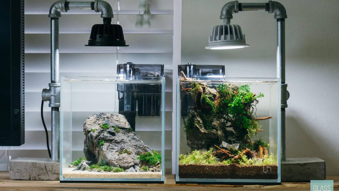 Ultum Nature Systems 20c Planted Nano Tank Gallery Gl Aqua